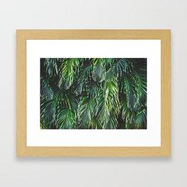 Tropical Foliage Framed Art Print