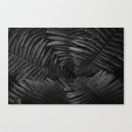 Leaf Vine (Black and White) Canvas Print
