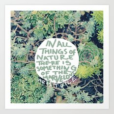 Aristotle: Nature Art Print