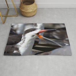 Watercolor Bird, Black Skimmer 02, Gulf Island Beach, Florida Rug