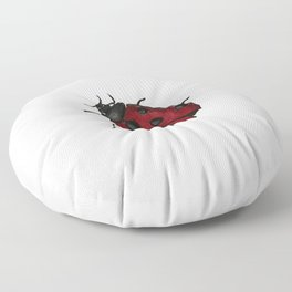 Lady Bug Floor Pillow