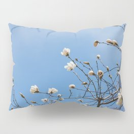 First to Bloom - Magnolia Flower Photography Pillow Sham