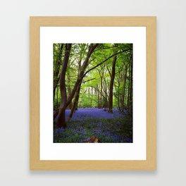 Lilac Spring Framed Art Print