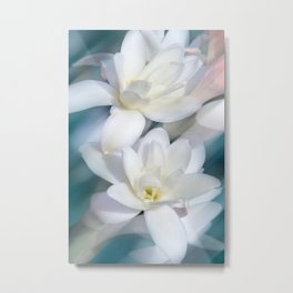 Flowers white macro 057 Metal Print