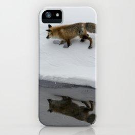 Carol M. Highsmith - Hunting Fox iPhone Case