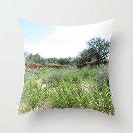 Clovis Site, No. 2 Throw Pillow