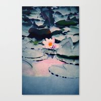 lily Canvas Prints featuring lily by Claudia Drossert
