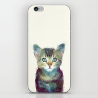 dude iPhone & iPod Skins featuring Cat // Aware by Amy Hamilton