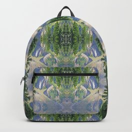 SWIFT CREEK HEADWATERS BELOW TABLE MOUNTAIN Backpack