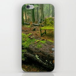 Enchanting forest iPhone Skin