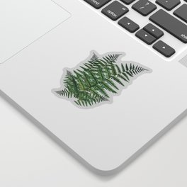 Among the Fern in the Forest Sticker