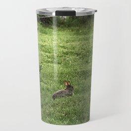 Baby rabbit enjoying sunshine Travel Mug