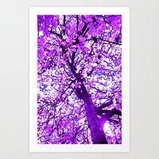 The Dreamer's Tree Art Print