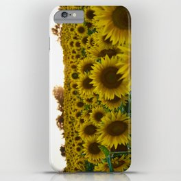 Sunflowers in a Colorful Haze iPhone Case