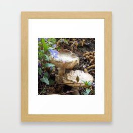 Fairy Gnome Sweet Home Framed Art Print