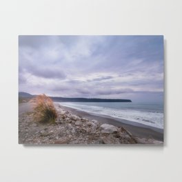 Windswept beach at Bruce Bay at sunset  in New Zealand Metal Print