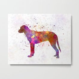 Finnish Hound in watercolor Metal Print