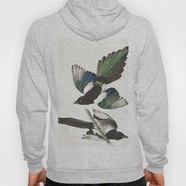 American magpie, Birds of America, Audubon Plate 357 Hoody