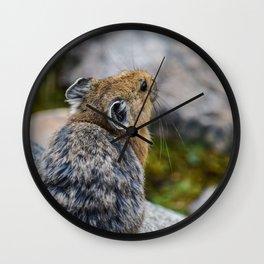 Canadian Pika 2 Wall Clock