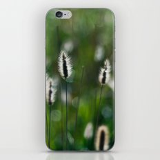 green summer iPhone & iPod Skin