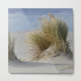 New dune forms around the beach grass - Northsea coast - the Netherlands Metal Print