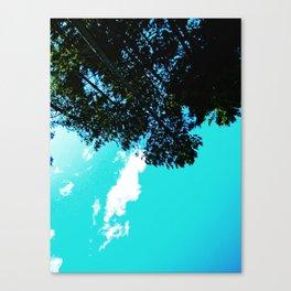 Coquet Minnesota Canvas Print