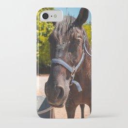 Vertical Portrait Brown Horse Natural Landscape iPhone Case