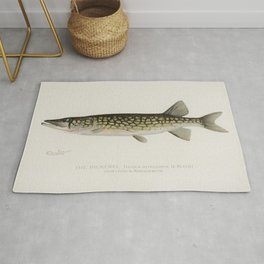 Pickerel (Lucius Reticulatus Le Sueur from a pond in Massachusetts) illustrated by Sherman F Denton Rug