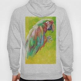 Macaw Parrot Hoody