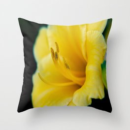 Day Lily-4 Throw Pillow