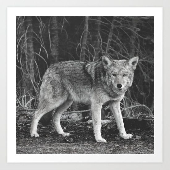 Mighty Wolf (Black & White) Art Print