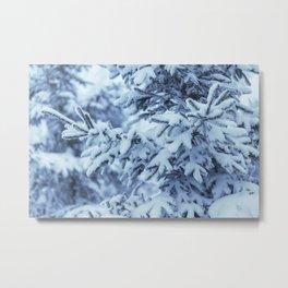 Snowy Spruce Needles 3 Metal Print