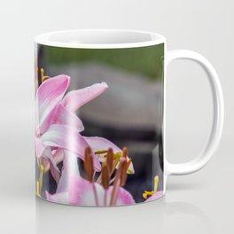 Pink & White Lilly Coffee Mug