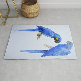 Hyacinth macaws, beautiful blue parrots Rug