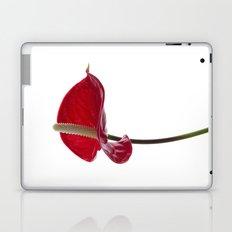 Anthurium - 2 Laptop & iPad Skin