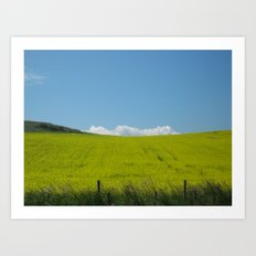 Scottish Countryside - Yellow Fields meet the Blue Sky Art Print