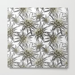 Mum Floral Pattern - Mum's the word - Black and White Floral Design - White Mum Flowers - I Love my Metal Print