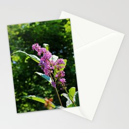 Lingering Propositions Stationery Cards