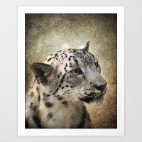 snow leopard Art Prints featuring Snow Leopard by Jai Johnson