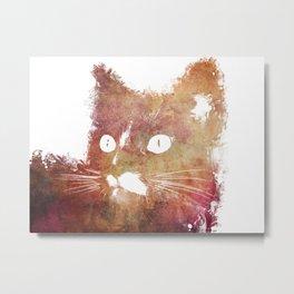 Orange cat Metal Print