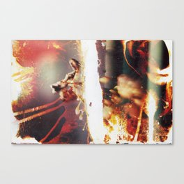 Decomp #2 Canvas Print