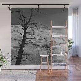 Mystical View Over Minerva Spring Wall Mural