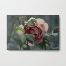 Rose Garden II Metal Print