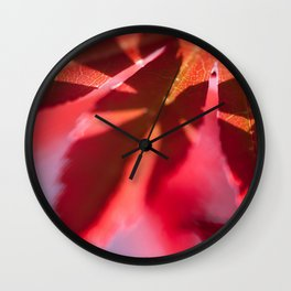 Sunshine on my Japanese Maple - Botanical Colorful Wall Art - Close-up Photography in my Garden - Foliage Structures  Wall Clock