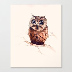 Owl in the snow Canvas Print