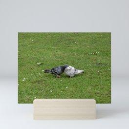 Pigeons in Love Mini Art Print