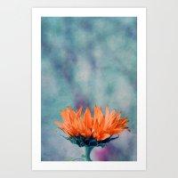 sunflower Art Prints featuring sunflower by Claudia Drossert