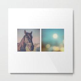 the horse diaries Metal Print