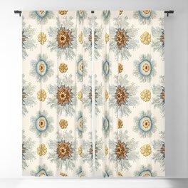 Coral mandala pattern Blackout Curtain