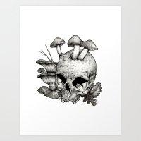 mushrooms Art Prints featuring Mushrooms by Arnaud Gomet